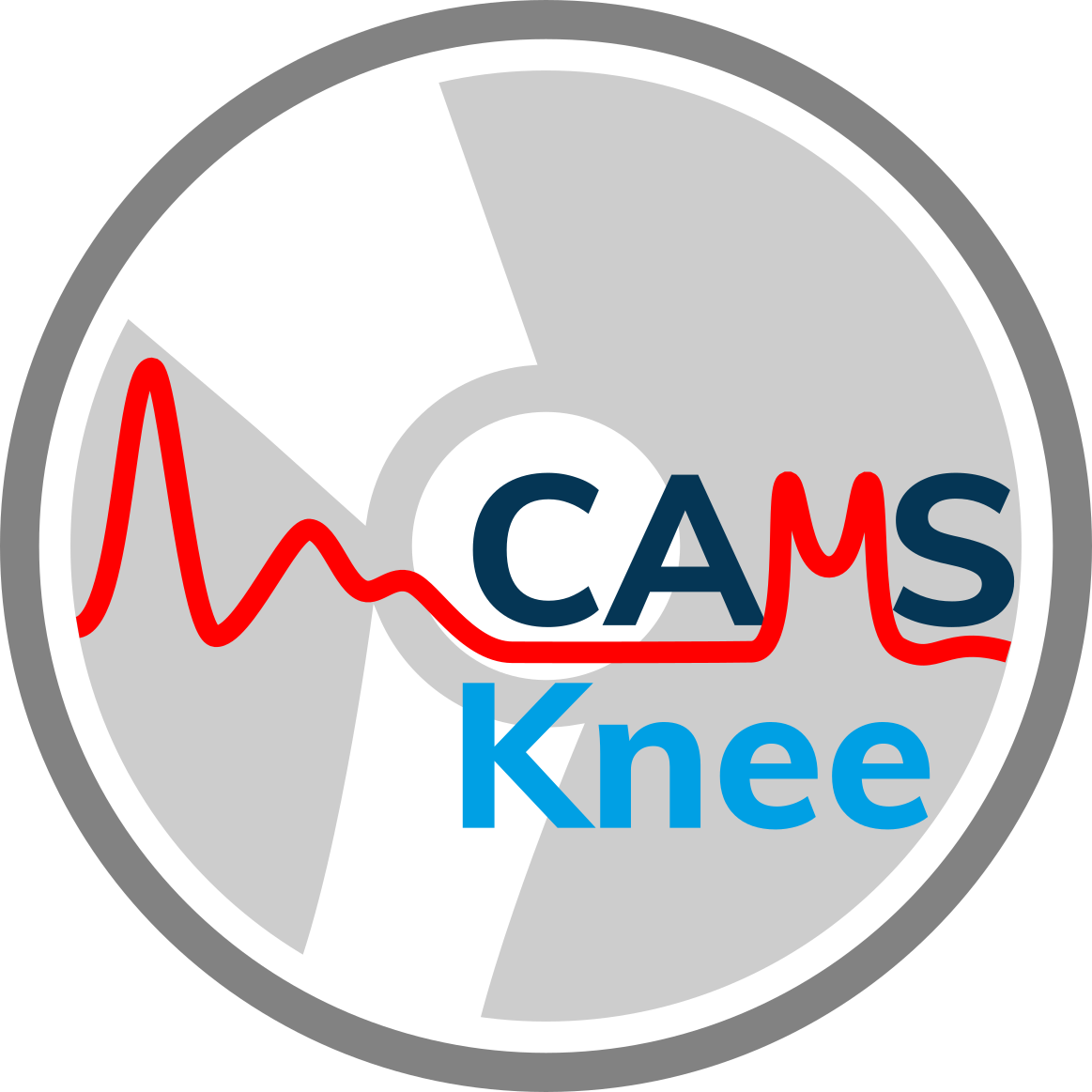 CAMS-Knee OpenSim Workshop